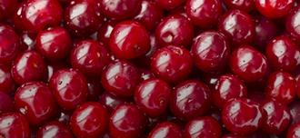 Saison Cherries