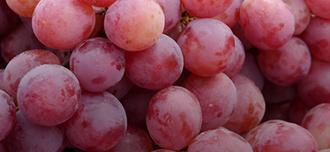 Saison Grape