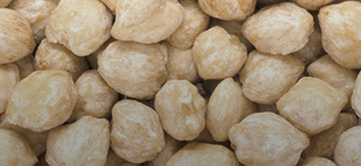 Saison Kukui Nut