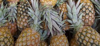Saison Pineapple