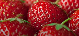 Saison Strawberry