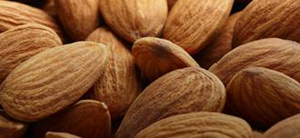 Saison Sweet Almond