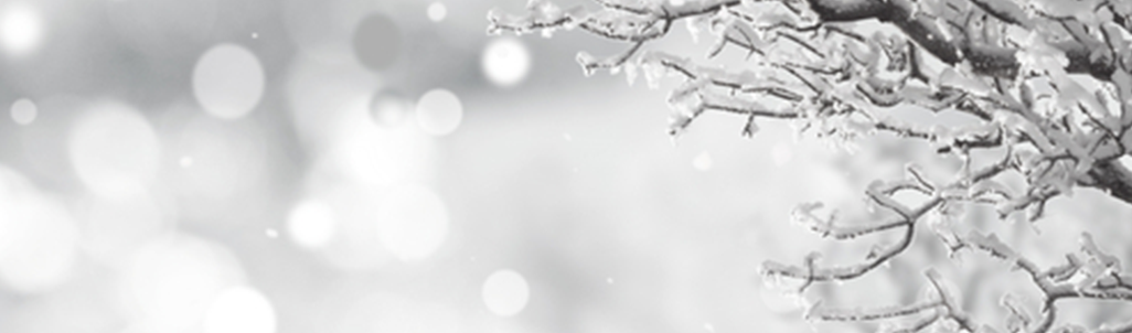 Saison Winter